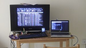 Dual Linux